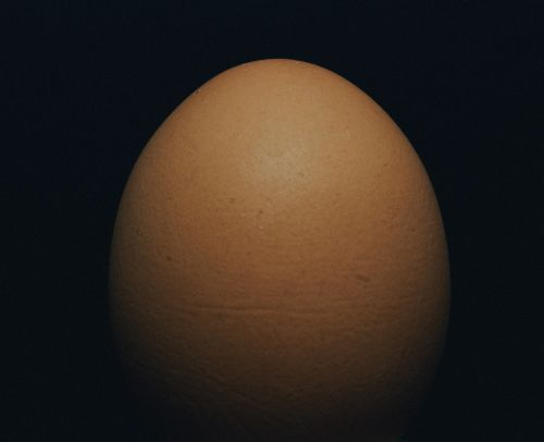 A picture of the best creepypasta An Egg.
